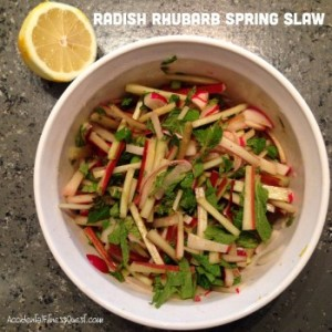Radish Rhubarb Spring Slaw