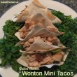 Grilled Chicken Wonton Mini Tacos